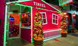 Tinsel-2019_1_AGW-Interiors_Philadelphia_Interior-Design